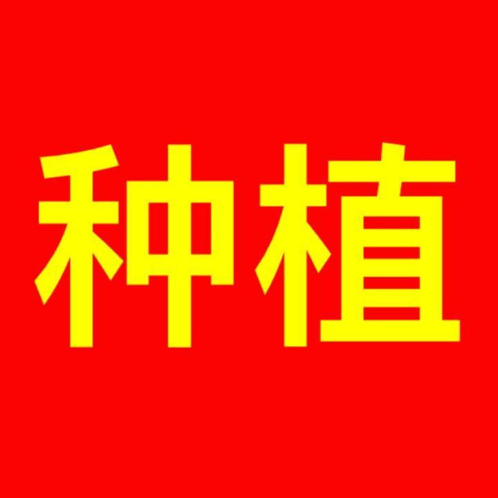天宇盆栽种植(农业)