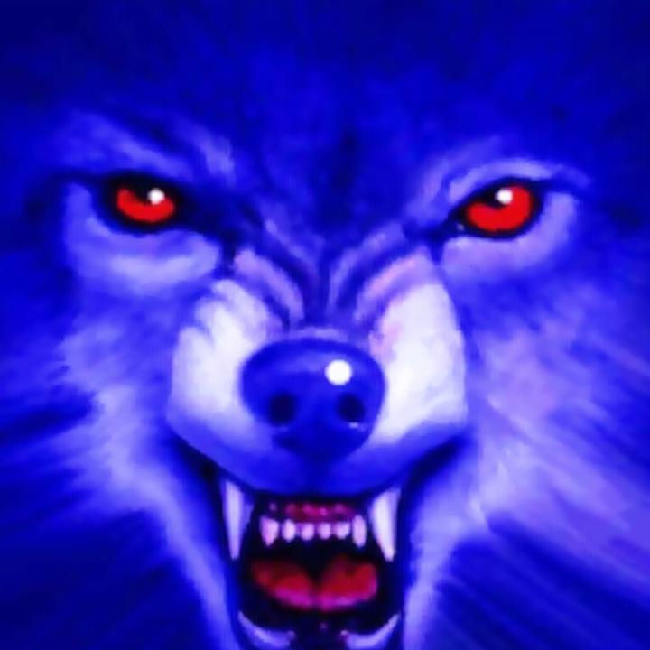 狼 之 牙