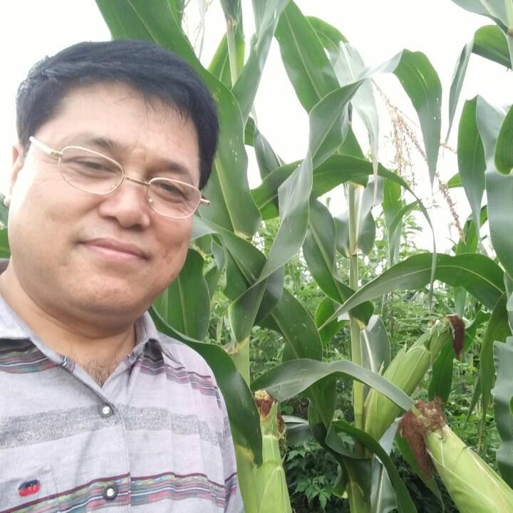 仙橙农产品专业合作社